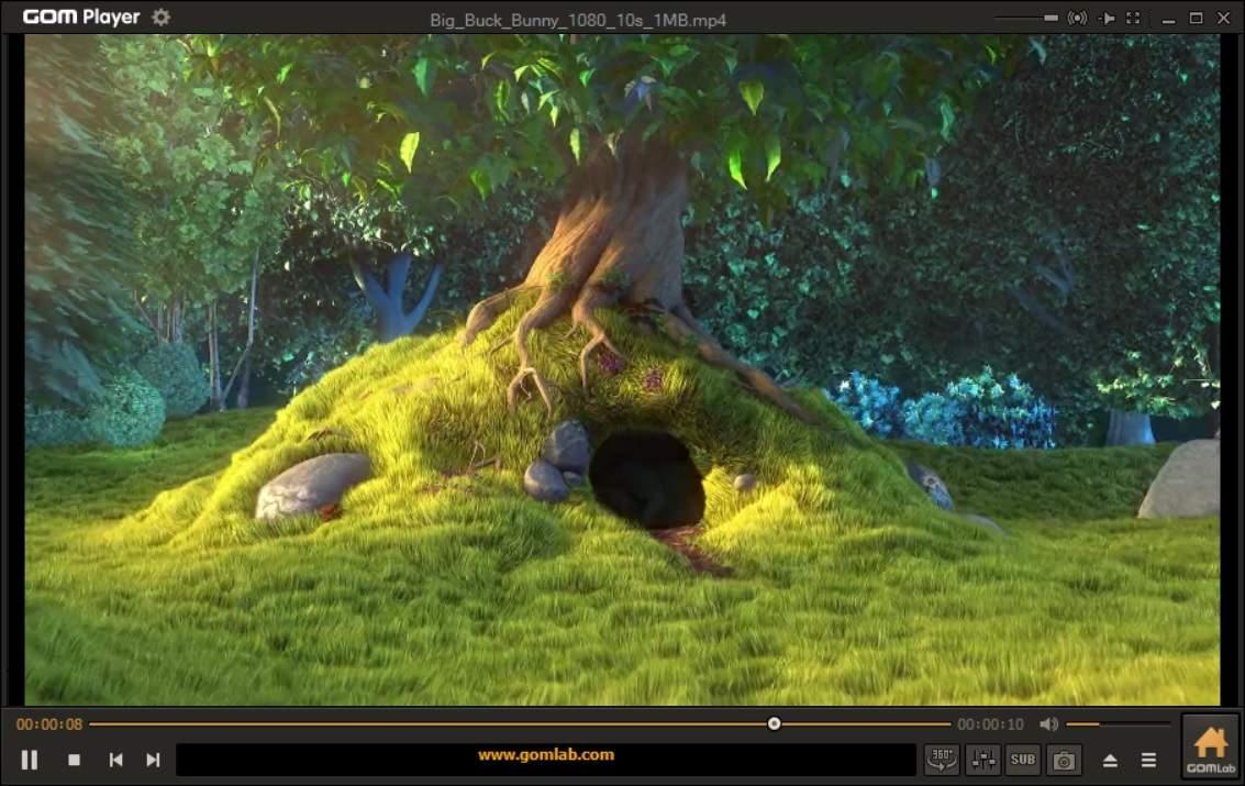 GOM Media Player Screenshot